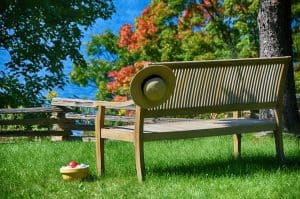 Teak bench in backyard