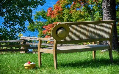 Teak bench in backyard